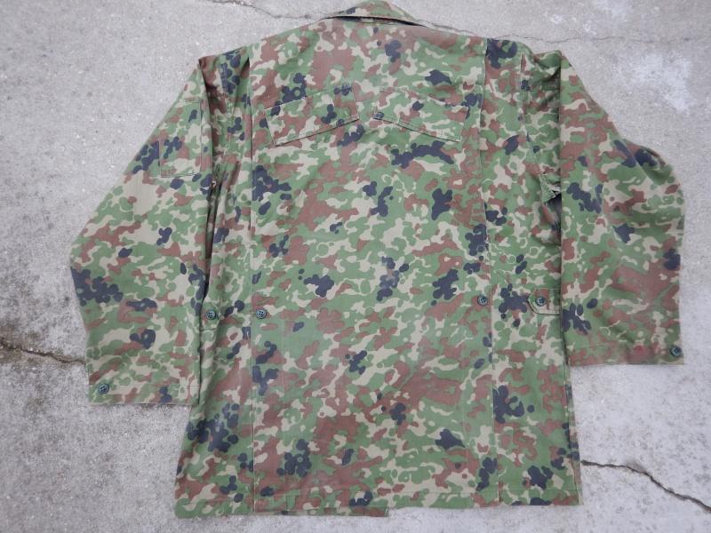 "JGSDF  ""Jeitai ""  Dscn2918"