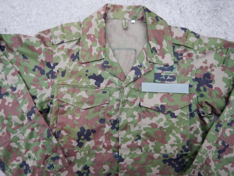 "JGSDF  ""Jeitai ""  Dscn2921"