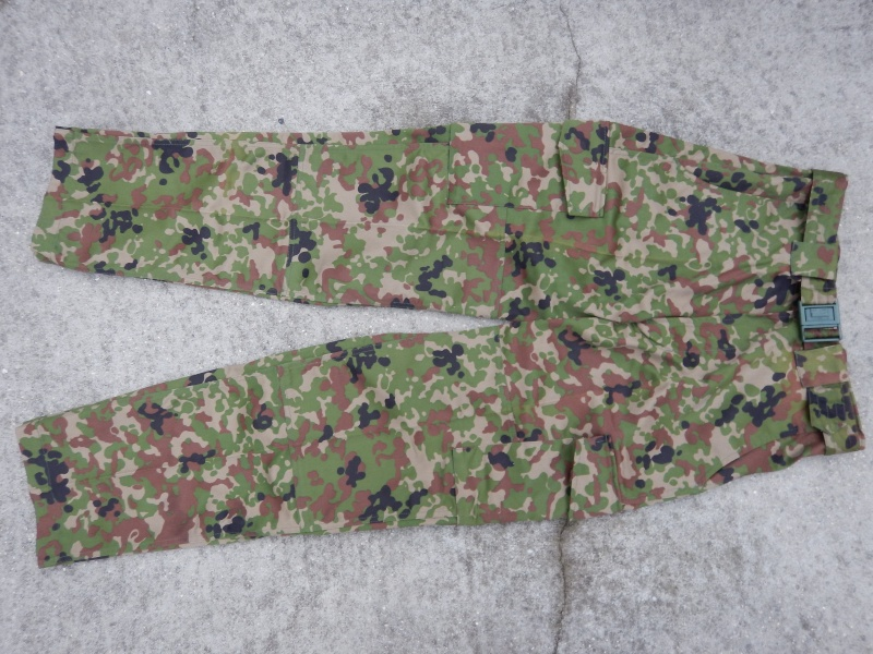 "JGSDF  ""Jeitai ""  Dscn2923"