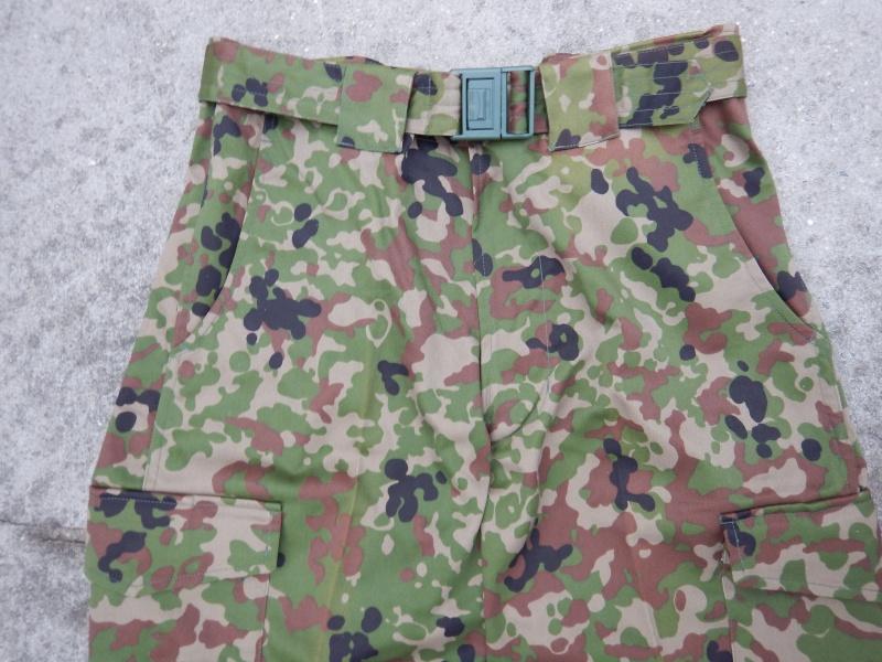 "JGSDF  ""Jeitai ""  Dscn2925"