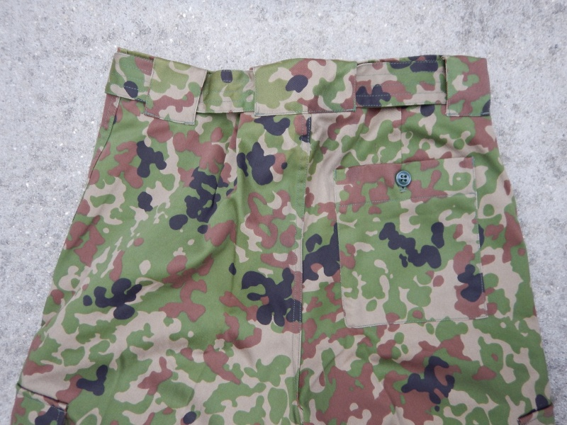 "JGSDF  ""Jeitai ""  Dscn2926"