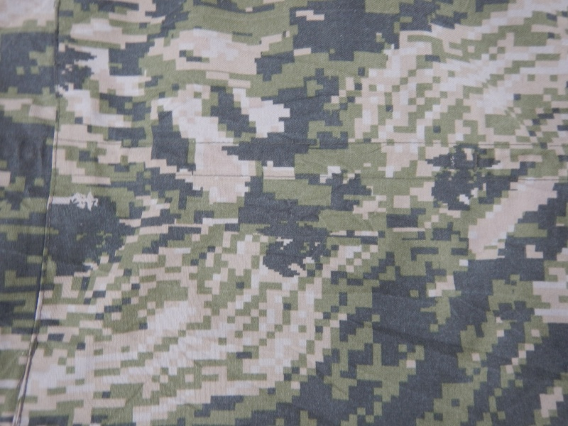 ROK Marines Pattern Dscn2935