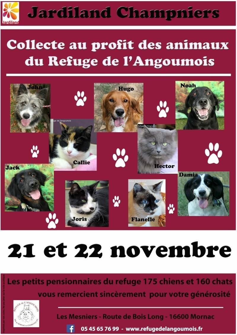 Collecte au Jardiland de Champniers les 21 et 22 novembre  Jardil10