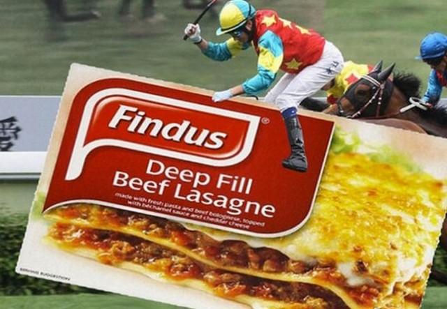 Spécial Findus Findus10