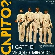 I GATTI DI VICOLO MIRACOLI Downl179