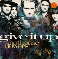 HOTHOUSE FLOWERS Images72