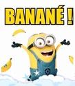 Bonne année 2016 aux forumeurs ACE  - Page 3 Banany11