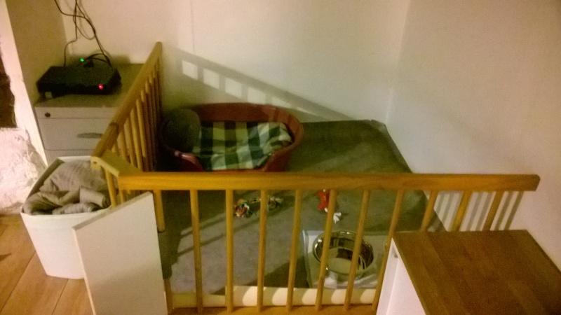 Trouvé !!!!! recherche covoiturage  pour chien (chiot BA) de Vendes (14) à Iffendic (35)  Wp_20113