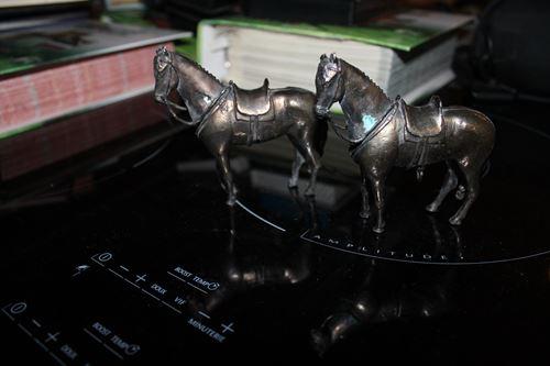 Cadres chevaux et figurines chevaux _copie15