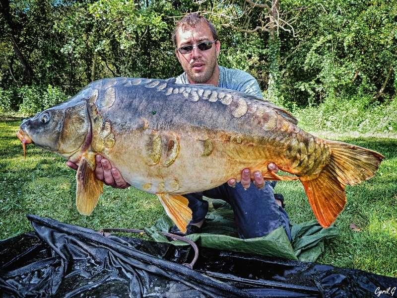 Big fish P1020310