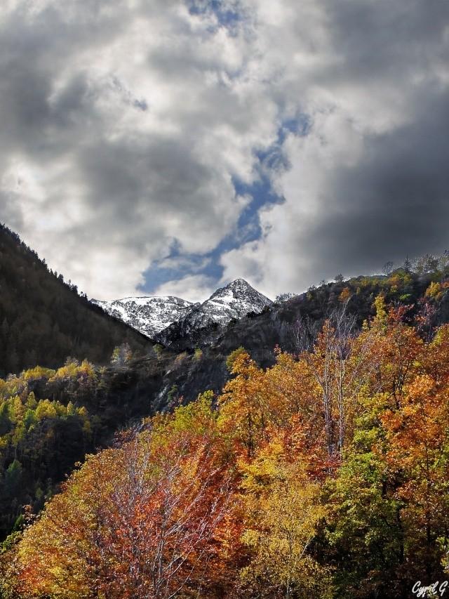 Quand automne rencontre hiver. P1030410