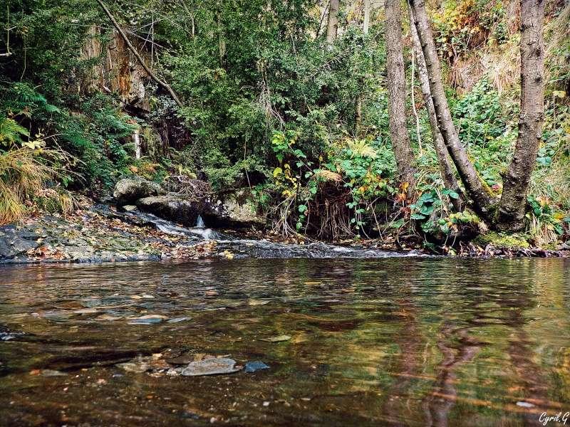 Le ruisseau P1030424