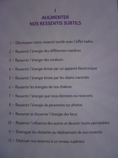 Serge Boutboul / Développez Vos Potentiels Énergétiques  P1070616