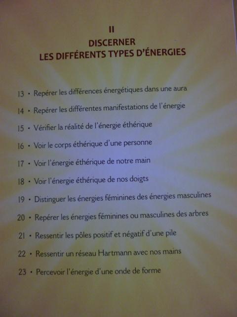 Serge Boutboul / Développez Vos Potentiels Énergétiques  P1070618