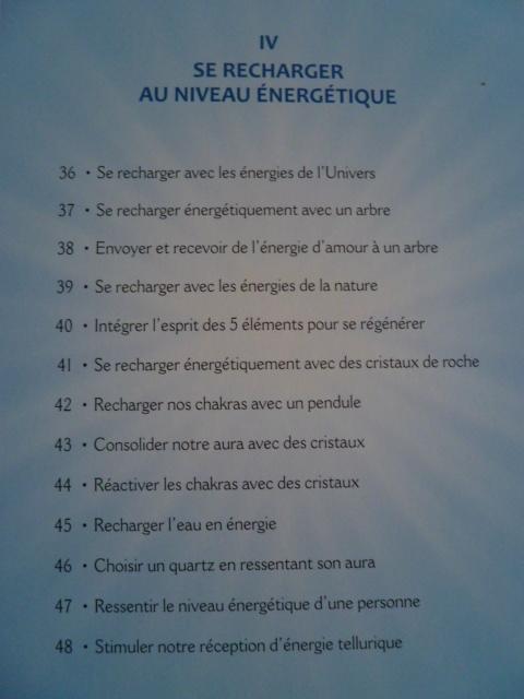 Serge Boutboul / Développez Vos Potentiels Énergétiques  P1070622