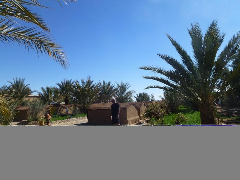[Maroc Camp/Dernières nouvelles] Tazarine : la ferme Serdrar P1040924