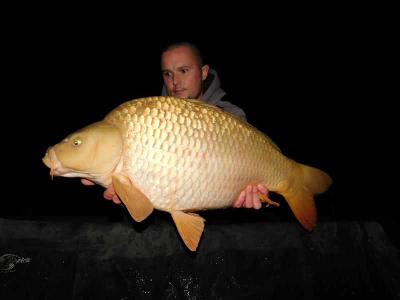 Vos plus jolis poissons (en dehors du poids) Le_29_11
