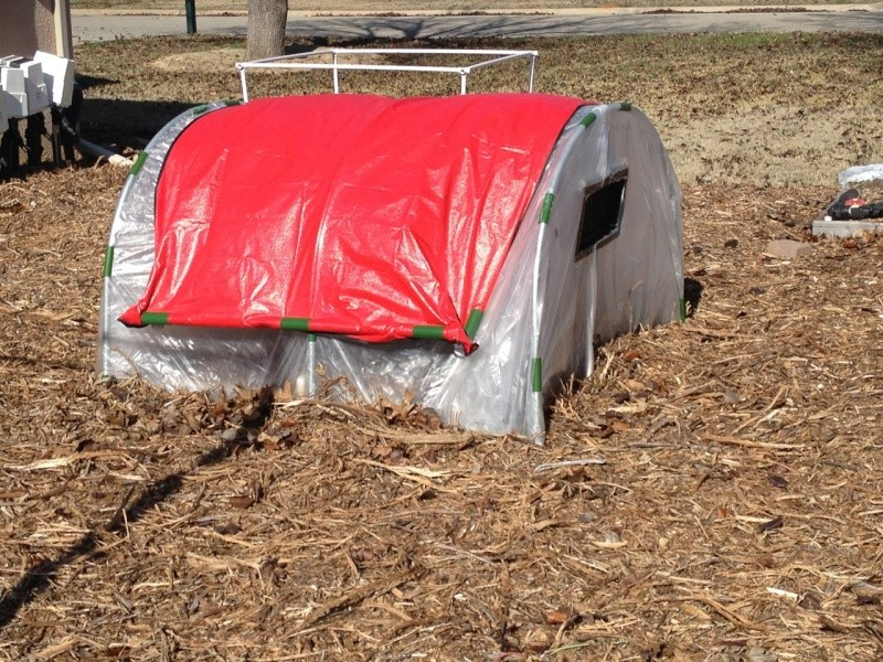 The Winter Journey and greenhouse plastic  - Page 9 Img_0710