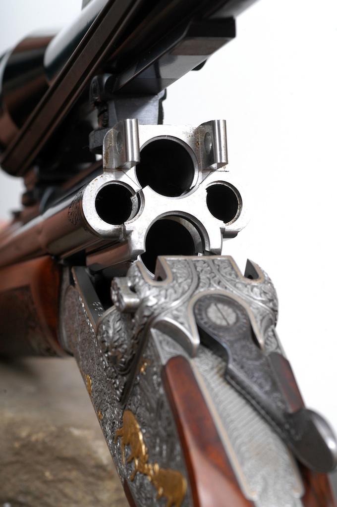 Peut-on prendre plusieurs armes avec soi? Dsc_2110