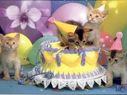 Joyeux anniversaire, Sylvaine ! Joyeux10