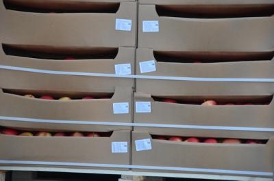 Смоленские таможенники предотвращают импорт продукции из стран Евросоюза - Страница 4 143