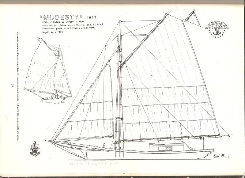 cat boat coot 00114