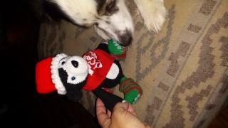 Secret Santa REVEAL! 2015 20151220
