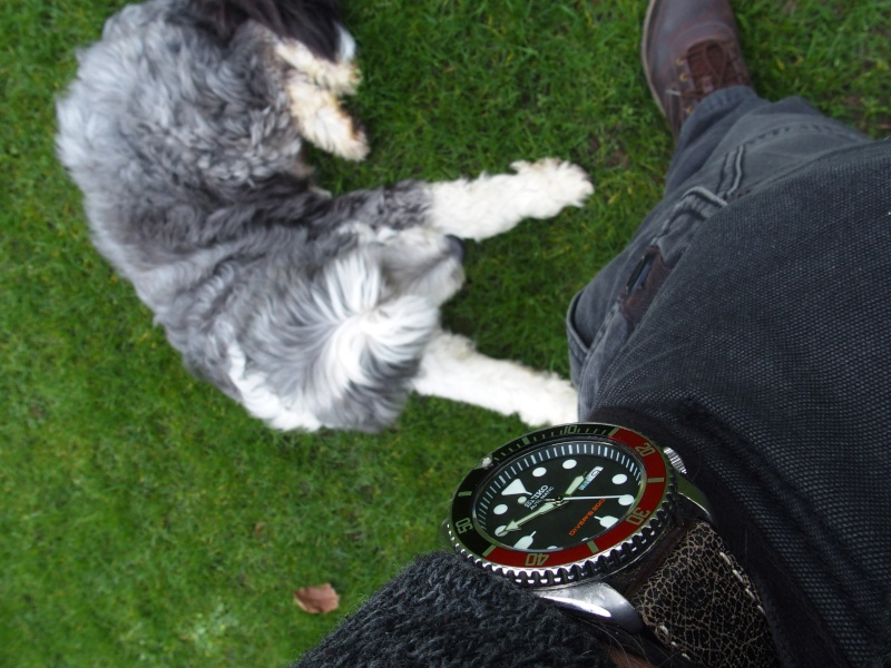 Le wrist-pocket-shoe wear topic multi-marques [tome IV] 16010917
