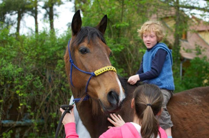 CONCOURS PHOTOS : le cheval et l'enfant - HOMMAGE !! 94124010