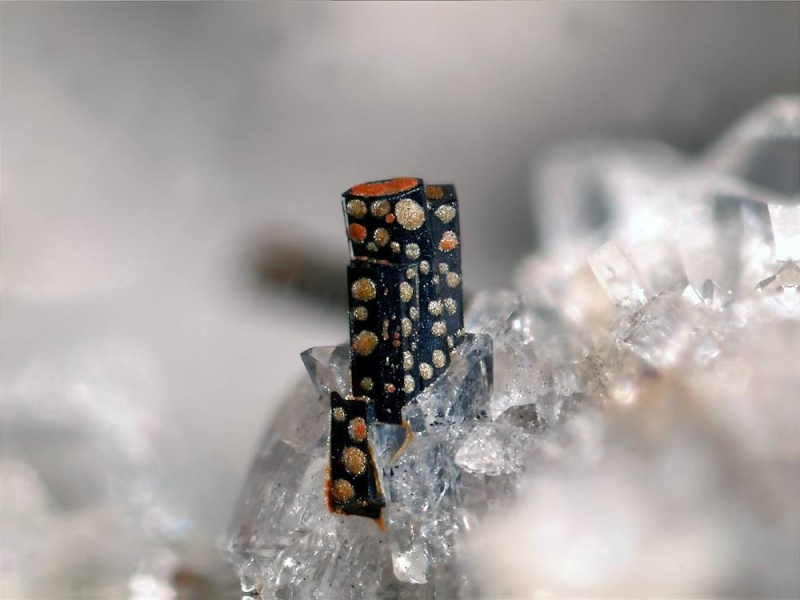 Sublimes photos de gemmes rares - Page 4 Pseudo10