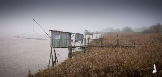 Estuaire Médoc en brume vu par Alain Py 12247111