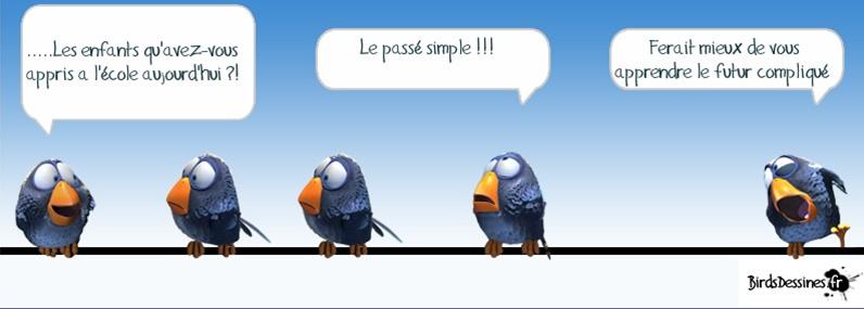 Les Birds - Page 13 2015-114