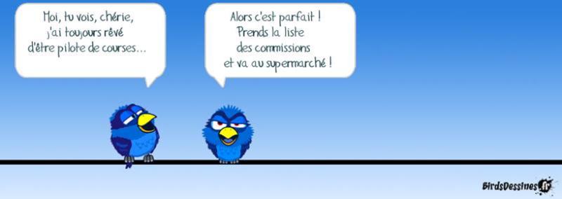 Les Birds - Page 13 2015-120