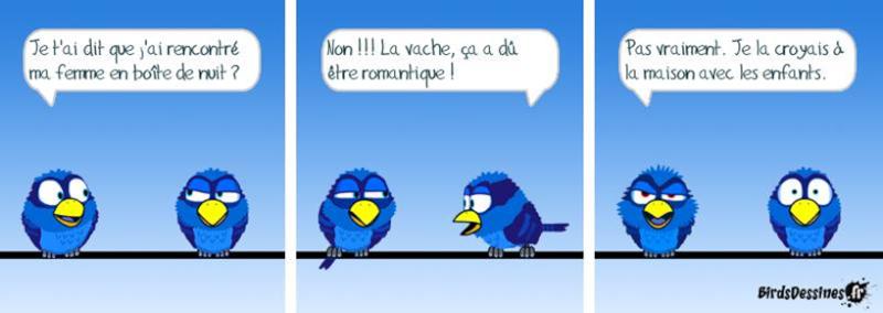 Les Birds - Page 13 2015-121