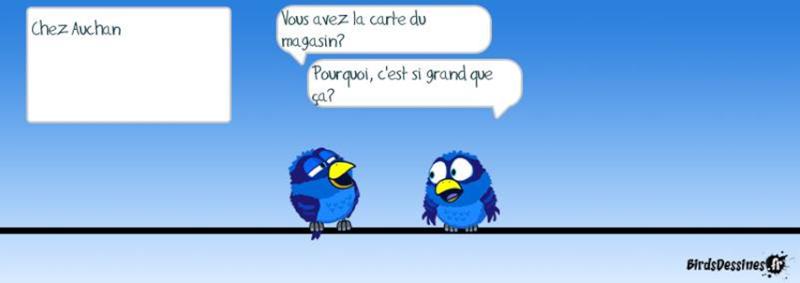 Les Birds - Page 13 2015-122