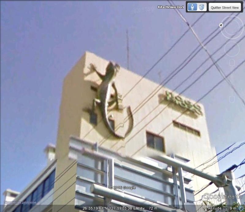 Un lézard à Nago - île d'Okinawa - Japon B12