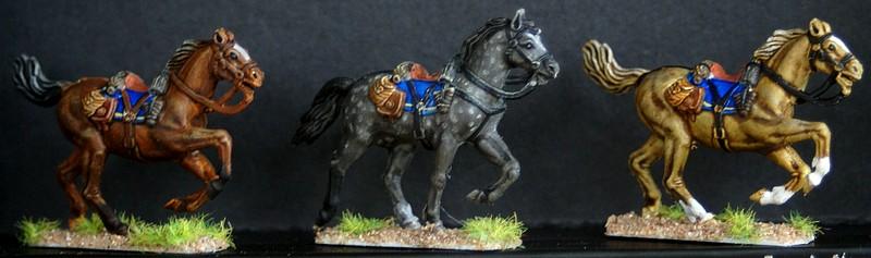Cavalerie confederée 1/72 Dsc05113