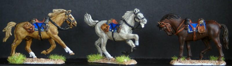 Cavalerie confederée 1/72 Dsc05114