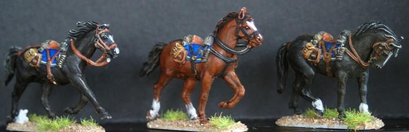 Cavalerie confederée 1/72 Dsc05115
