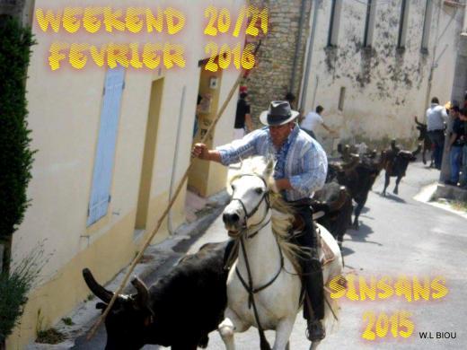 WL BIOU : WEEK 20/21 FEVRIER 2016 + 12 MANIFESTATION + Encierro d'hiver supplementaire   Sinsan10