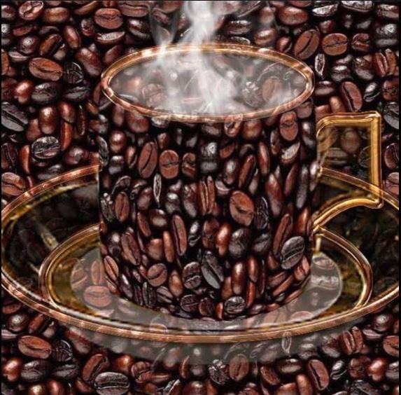 Le café - Page 3 Cafy10