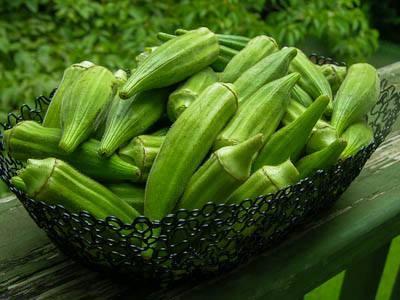 البامية غنية بالصمغ النباتي  11698510