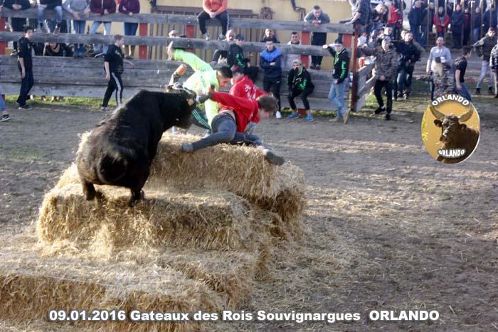09..01..2016..Souvignargues Gateaux des Rois   _mg_0034