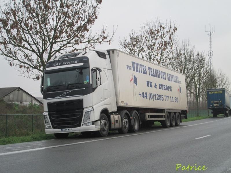 Whites Transport Services 209p12