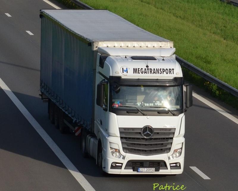 Megatransport (Zblewo) 290p10