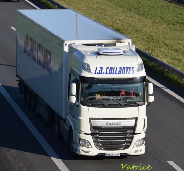 Logistica J.A. Collantes  (Montellano - Sevilla) 350p11