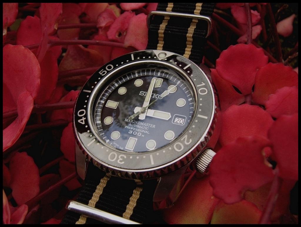 Votre montre du jour - Page 18 Rtimg_13