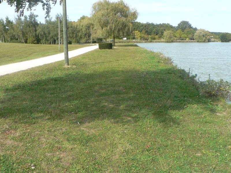 mon étang  P1020711