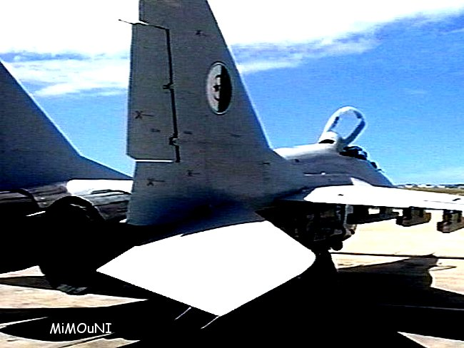 L'Algerie impressionne,classement première en arme et dernière en investissement Mig29-10