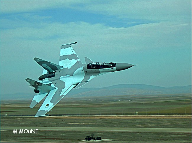 L'Algerie impressionne,classement première en arme et dernière en investissement Su-30d10